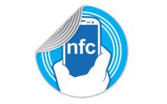 logo-nfs